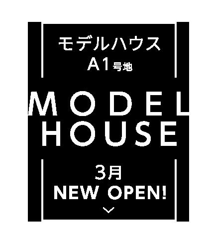 モデルハウス A1号地